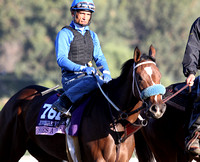 2013 Breeder's Cup